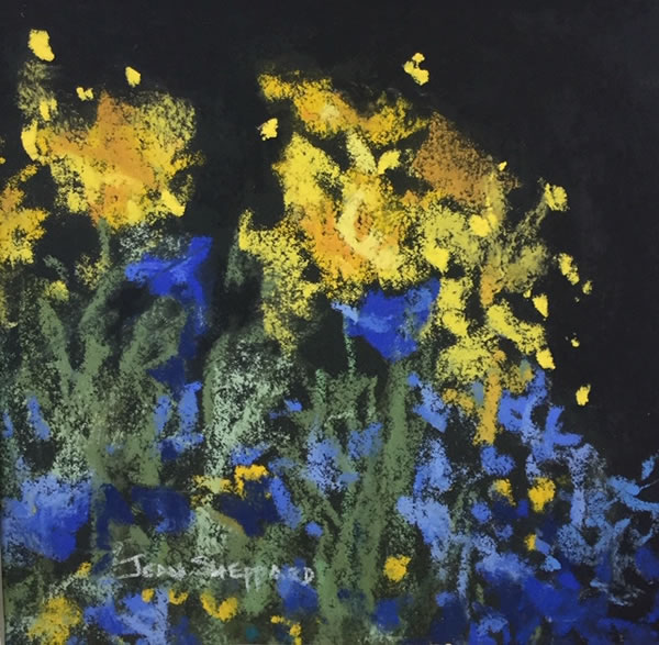 Jean Sheppard - Blue and Gold - 4x4in pastel